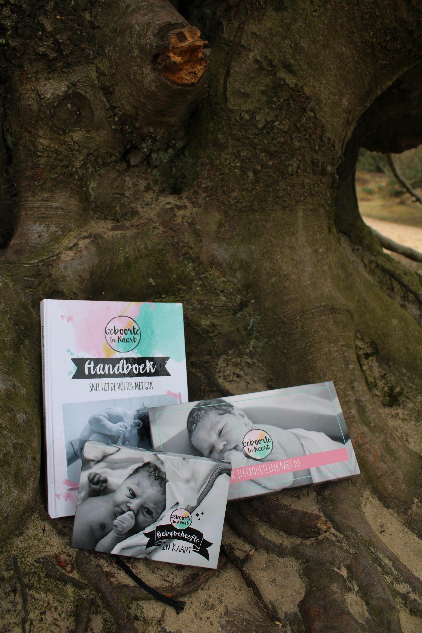 slaapmagie.nl geboorte in kaart en bevalling in kaart